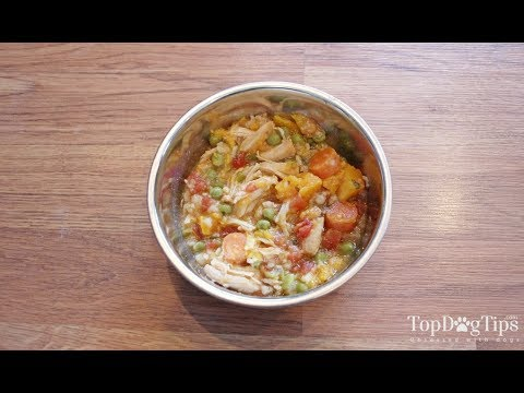 Homemade Dog Food for Puppies Recipe