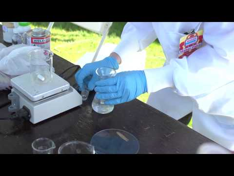 Young Scientist Demonstrates Amateur Chemistry