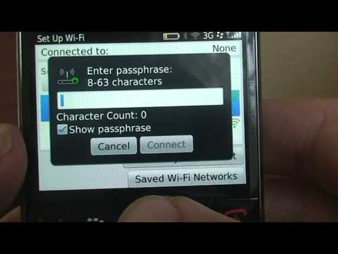BlackBerry connection to execMobile's pocket wifi