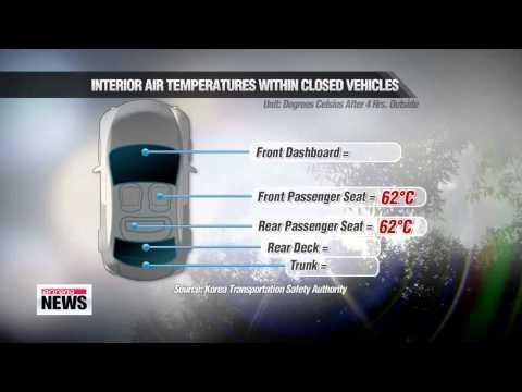 Summer heat sparks harzards inside vehicles 여름철 뜨거워진 자동차 위험천만