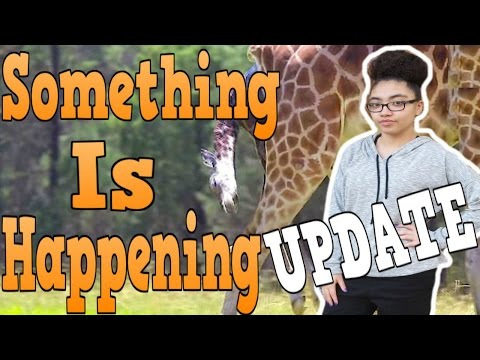 SIGNS OF ACTIVE LABOR Evening Pregnancy Giraffe Update RESPONSE