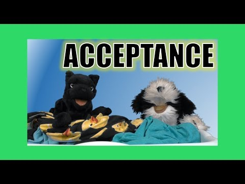 Acceptance (Daylight Savings Time):  George the Self Esteem Cat