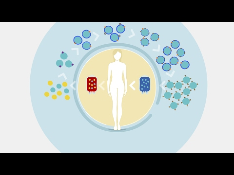 CAR T Cell Manufacturing Workflow: Isolation, Activation and Expansion