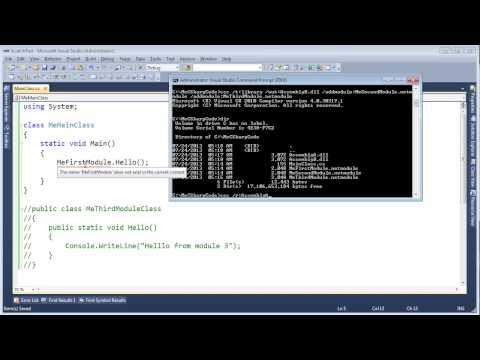 C# Multi-Module Assemblies