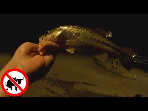 Bass Fishing at Night With a Texas Rig Worm and BuzzBait