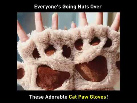 Grab these Cat Paws Gloves!