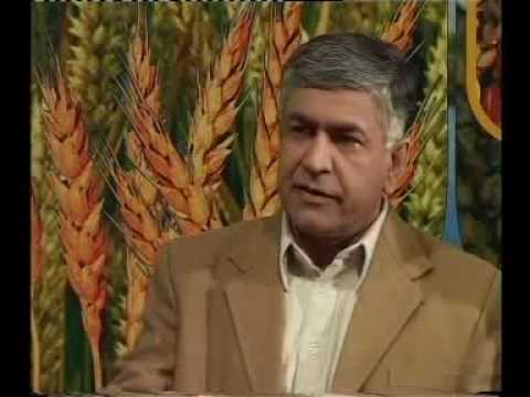 Rabi crops.Pakistan-1 Dr.Ashraf Sahibzada