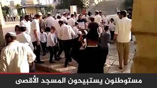 في مشهد متكرر.. عشرات المستوطنين يقتحمون باحات #المسجد_الأقصى 🇵🇸