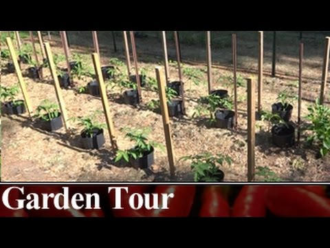 Full Garden Tour and Special Thank You!  May 24th 2015