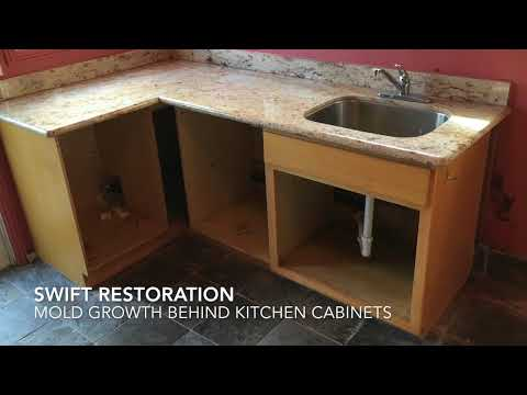 Mold growth behind kitchen cabinets