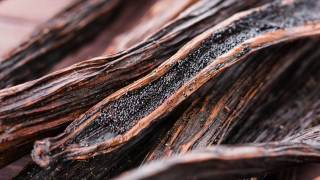 How To Make Your Own Vanilla Extract | DIY Recipe