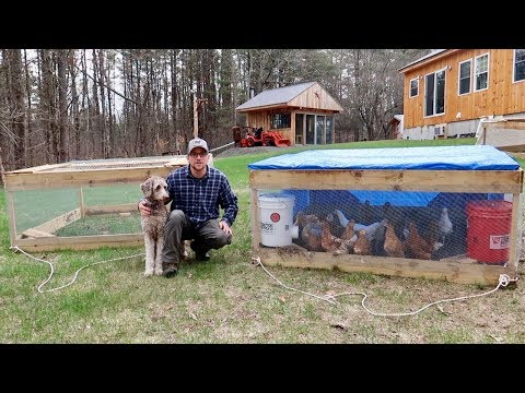 Building A FLOCK of $30 Chicken Coops