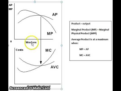 Marginal Physical Product vs. Average Physical Product