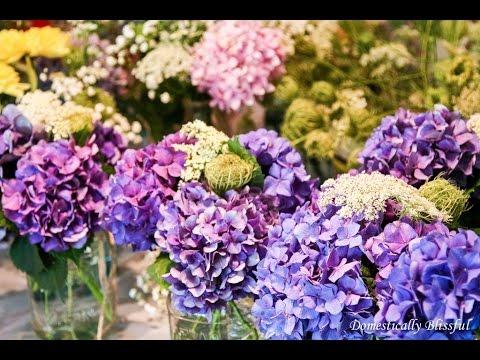 buy flowers - buy flowers to plant