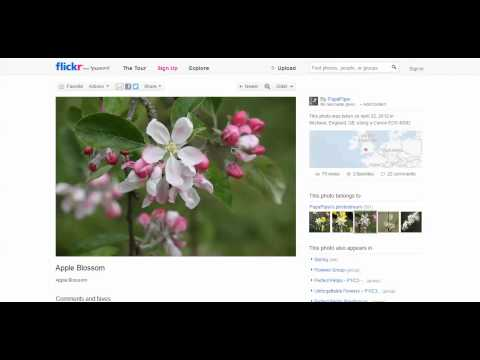 Finding Flickr Images to Use on your Website