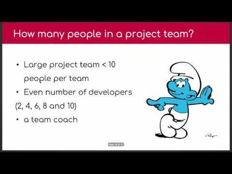 Building a Cohesive Drupal Team