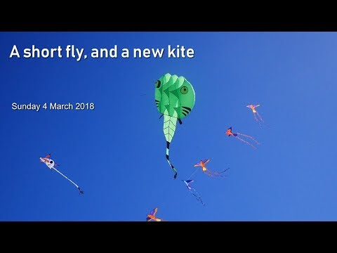 A short fly, and a new kite
