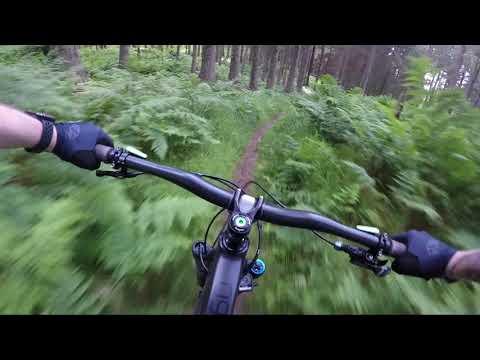The Best Mountain Bike Trails In Scotland - Pitmedden Forest