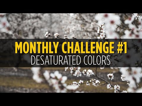 Desaturated Colors Photo Challenge