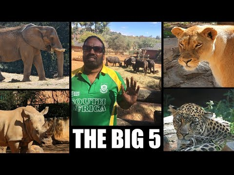 The Big Five: Wilbur Sargunaraj in South Africa