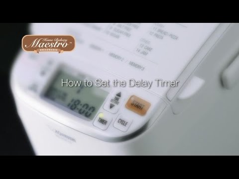 How to Set the Delay Timer