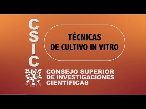 CSIC Aragón