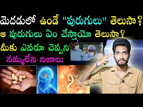 Brain Worms are REAL!! Explained In Telugu | Naveen Mullangi
