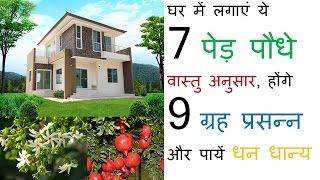 घर में लगाएं ये 7 पेड़ पौधे वास्तु अनुसार, होंगे 9 ग्रह प्रसन्न और पायें धन धान्य