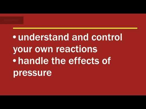 Performance Under Pressure - Effective Human Interactions: Course Overview