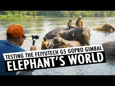 Testing Feiyutech G5 GoPro HERO5 Gimbal at Elephant's World | RehaAlev