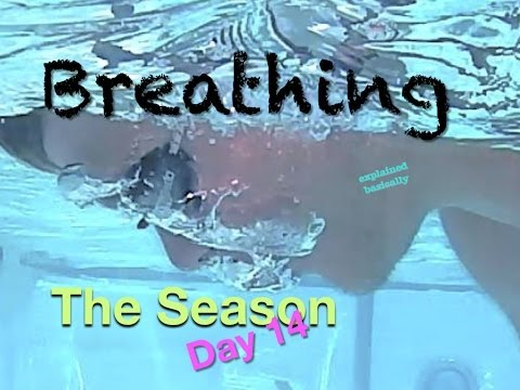 Breathing Swim Lesson 'The Season Day 14' Helpful tips on how to swim #swimlesson #swimbreathing