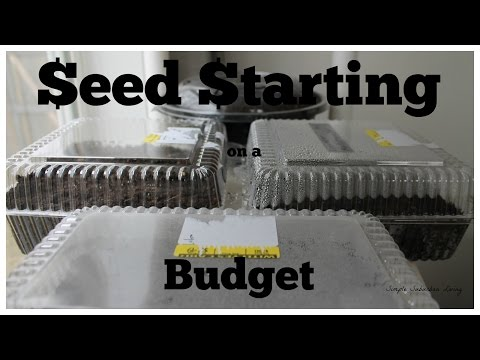 Starting Seeds on a Budget - Stop buying gardening supplies this year