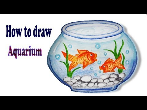 How to draw Aquarium .Step by step (Easy draw).