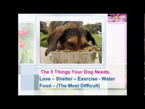 Natural Choice Dog Food - Weight Control Dog Food