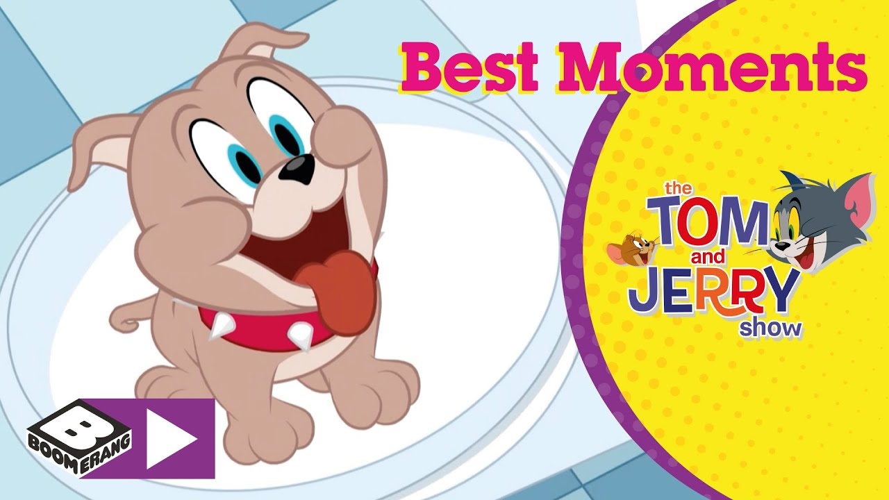 Tom And Jerry   Best Moments From Tyke   Boomerang
