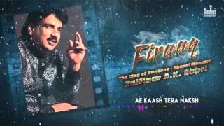 Ae kaash Tera Naksh - Ghazal Maestro  Zulfiqar A.K. Sabri | Firaaq I