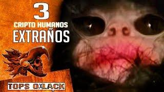 3 ATERRADORES CRIPTOHUMANOS LA VERDAD ! @OxlackCastro