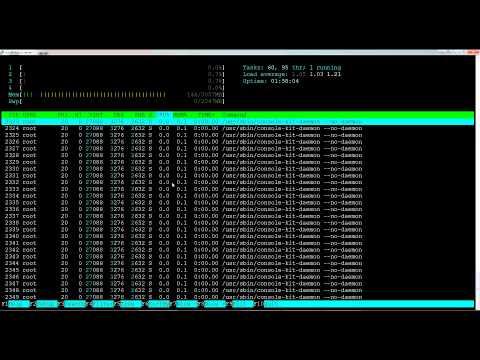 Linux htop Taskmanager