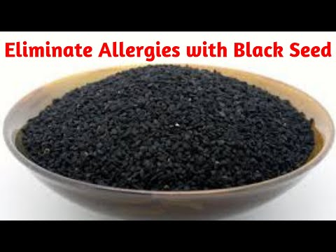 How to Eliminate Allergies with Black Seed Oil Proved by Research