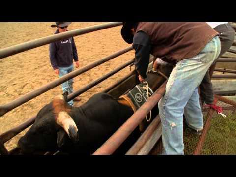 Train a Bull to Buck - Hell on Hooves: Season 4