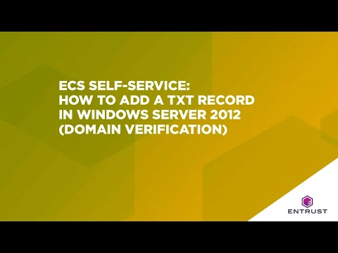 ECS Self-Service: How to add a TXT record in Windows Server 2012 (domain verification)