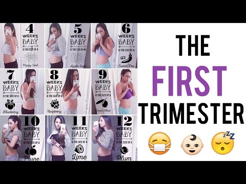 FIRST TRIMESTER OF PREGNANCY: Morning Sickness Hell, Craving Ice & Too Much Saliva | Ysis Lorenna