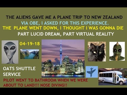 My Reptilian Alien Abduction, New Zealand (OBE-VR-Lucid Dream). Our Plane Nose Dived To the Ground!