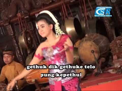 Lirik Lagu JANDA BARU (Duet) Jawa Karawitan Campursari - AnekaNews.net