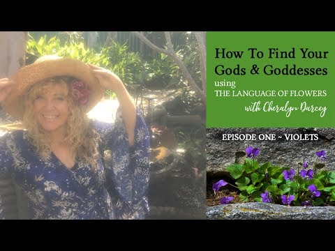 How To Find Your Gods & Goddesses using The Language of Flowers ~ Violets