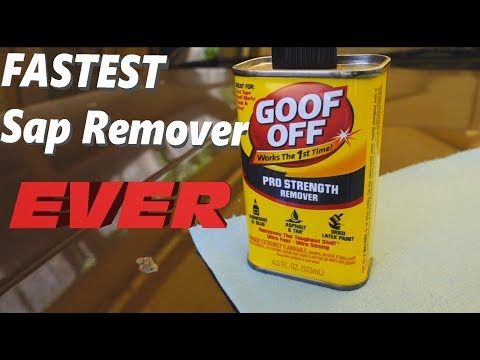 How To Remove Sap From Your Car FAST.