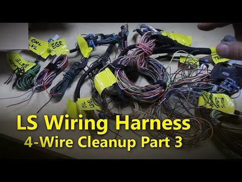 LS Wiring Harness Part 3 | Project Rowdy Ep015