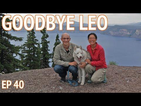 Goodbye Leo   EP 40 Camper Van Life