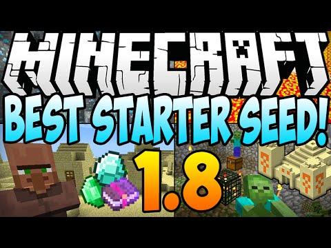 ★ Minecraft 1.8.1 Seeds - BEST STARTER SEED! Diamonds, Dungeon & Village AT SPAWN! (Minecraft 1.8)