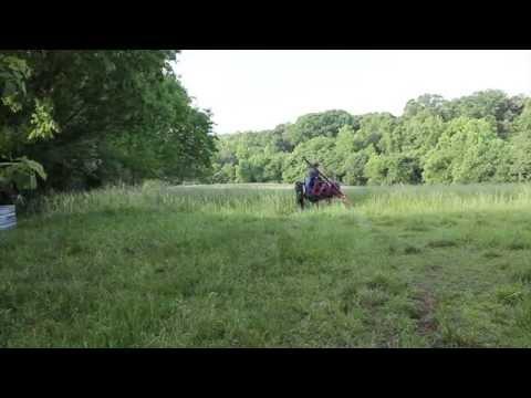 New Holland 451 Sickle Mower Cutting Hay